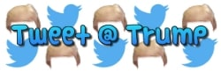 tweet at trump banner 250